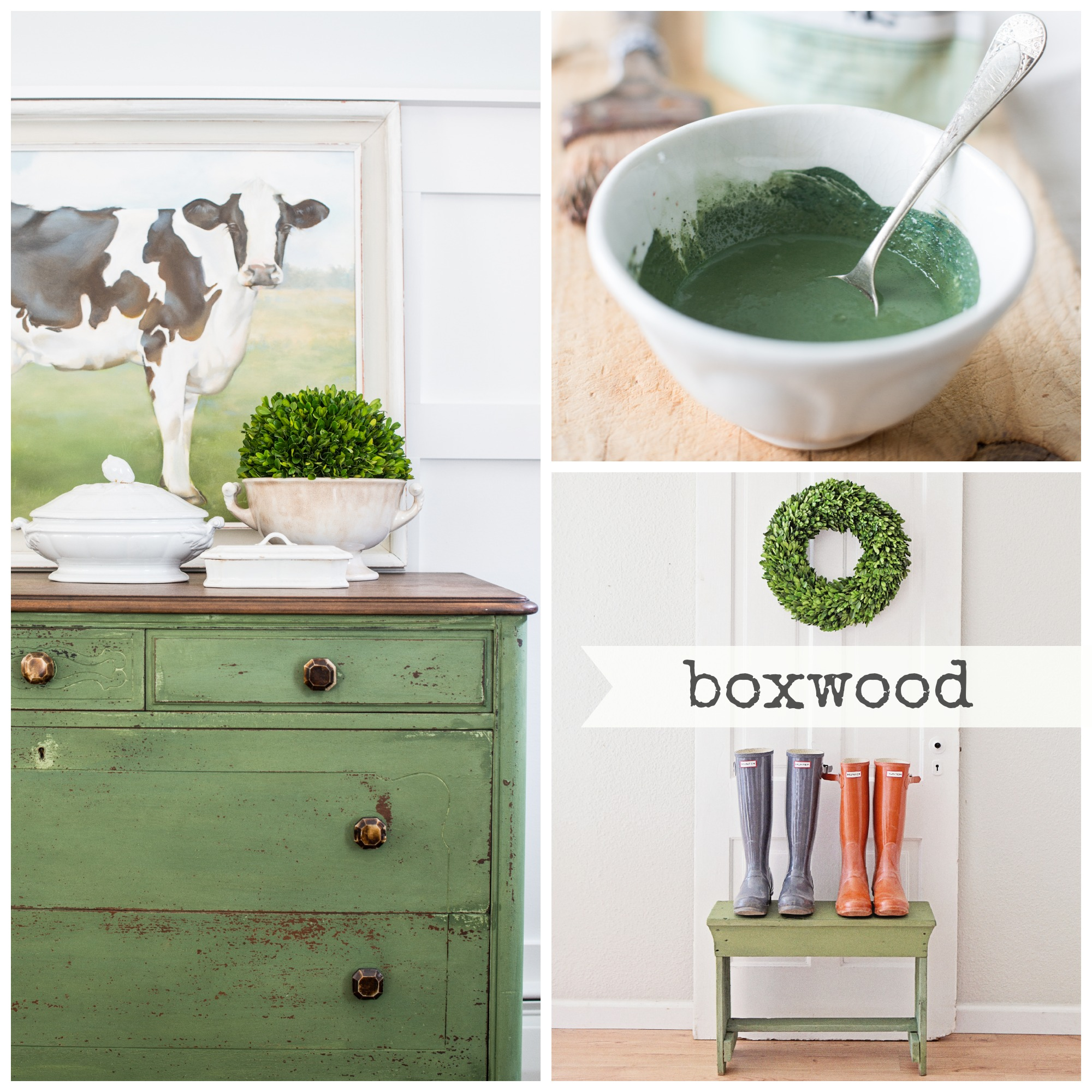 Shop miss mustard seed milk paint boxwood green olive - Mustard seed interiors ...
